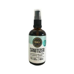 PUNCH Health Sanitizer käte desinfitseerimisvahend, Pihustiga (100 ml) 1/1